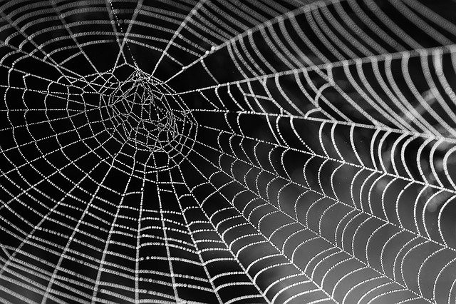 If you want to take more than #halloween #cobwebs out of your space, contact Fescape #builders to make improvements to your home or office.